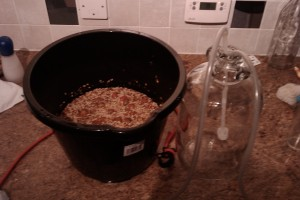 Rosehip wine in the making